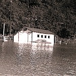The Riding Stable after Hurricane Diane, August, 1955
